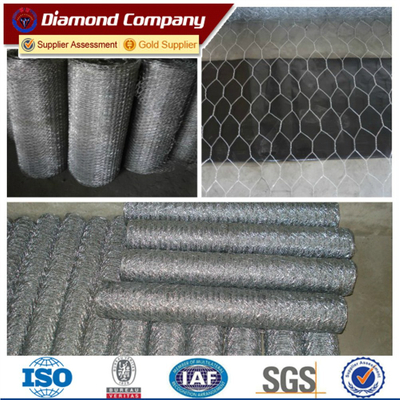 Galvanized Hexagonal Wire Mesh (Chicken Mesh) /cheap price anping chicken coop wire mesh/hexagonal wire mesh