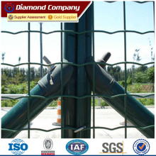 Holland wire mesh /The Dutch nets /corrugated nets /Europe fence
