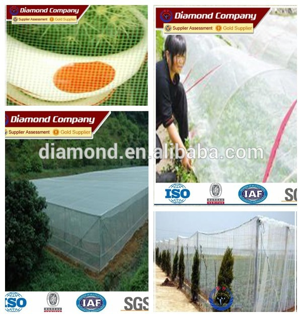 cheap price plastic insect screen supplier with high quality