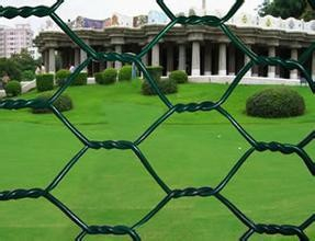Competitive Price PVC Coated Hexagonal wire netting