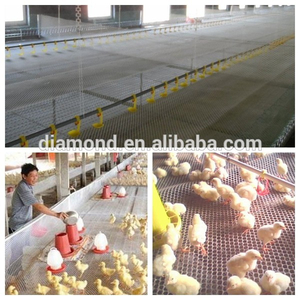 "3/4"" Cheap chicken nets fishing net/cheap nylon netting/chicken wire used for stucco wire netting"