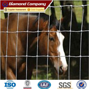 Metal Galvanized Deer Fence Mesh / Wire fence products
