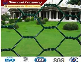 Plastics Coated Chain Link Fence Galvanized Chain Link Wire for sale