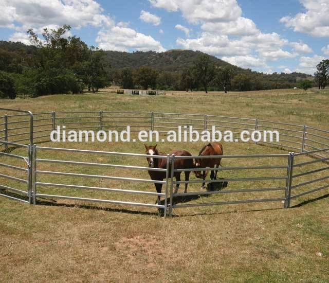Design For Australia Livestock Oval Rails Galvanized Sheep