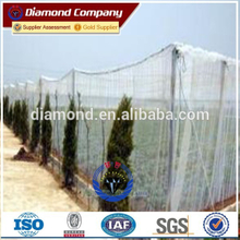 Selling Window Screen Netting /Plastic Insect Screen
