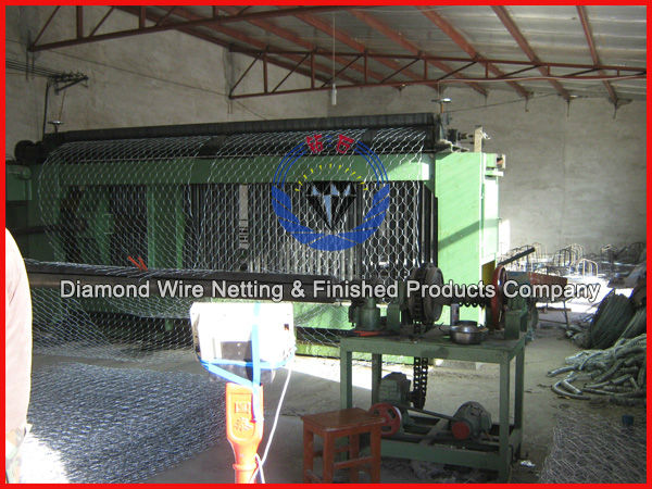 hexagonal double twisted wire mesh