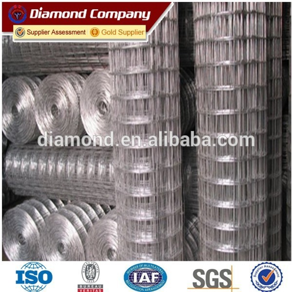 0.8mm Galvanized welded wire mesh for mice / pvc caoted welded wire mesh